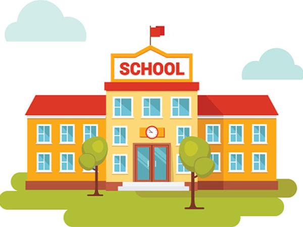 school website seo services